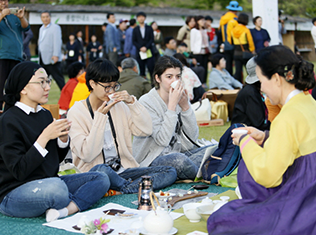 Boseong Green Tea Festival